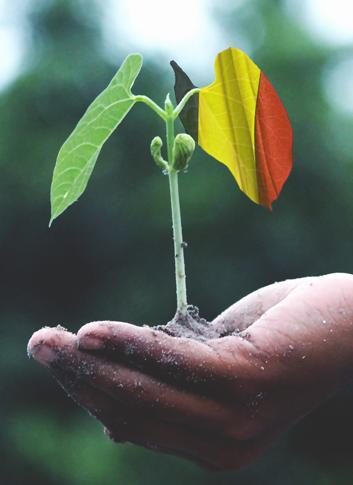 eco growth