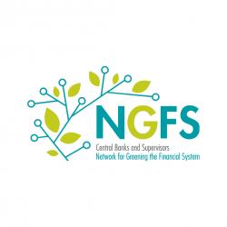NGFS Logo